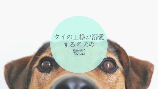 タイの王様が溺愛する名犬トーンデーンについての物語