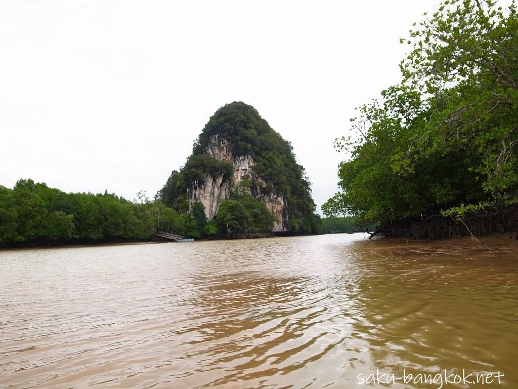 雨のクラビ旅行(2)~クラビ川マングローブツアー