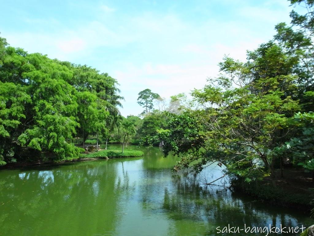 スリナコン・クエンカーン公園の池