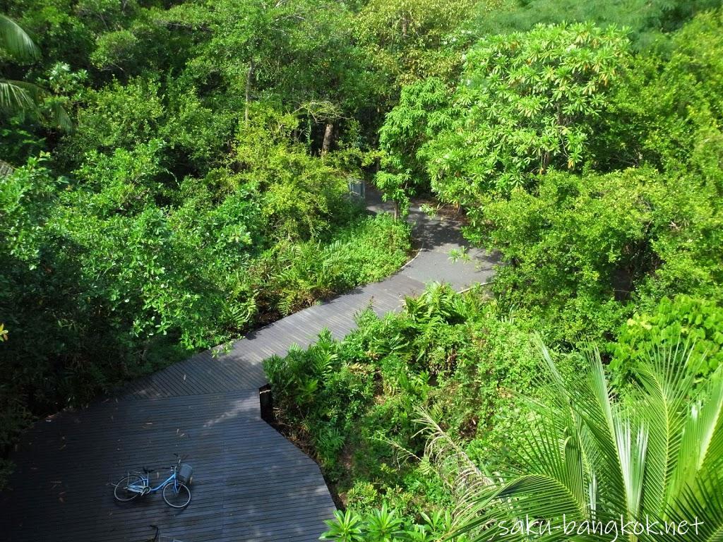 スリナコン・クエンカーン公園内の展望台から眺め
