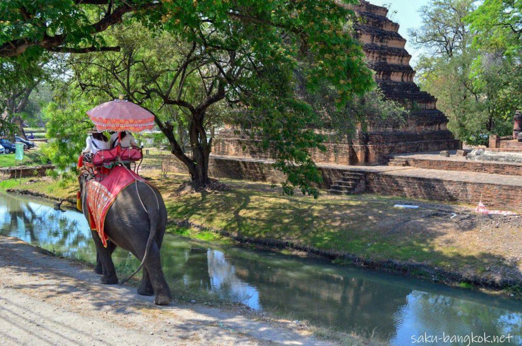 アユタヤ遺跡を眺めながらの象乗り