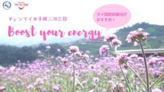 チェンマイ女子旅二泊三日 Boost your energy