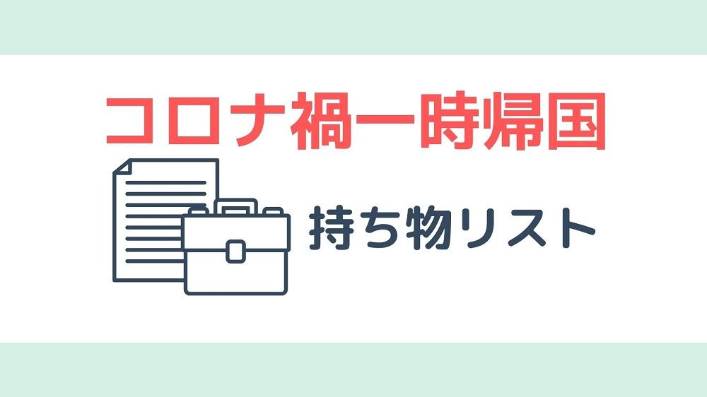 コロナ禍での日本一時帰国の持ち物リスト